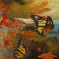 Effetto farfalla_60x50_2015